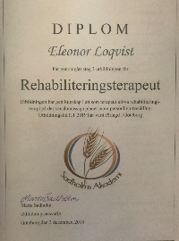 Rehabilitation Therapist Diploma